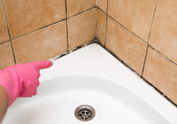 Keep mold out of your home with these tips
