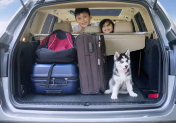 Safe Driving Tips for Your Fourth of July Road Trip