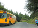 Safety Precautions to Prevent Accidents This Back-to-School Season